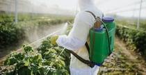 pesticides_v1